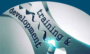 Training and Development on the Gears.
